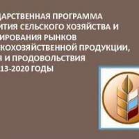 Реализация мер государственной поддержки АПК до 2020 года