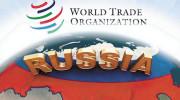 Итоги Всероссийской конференции в Сочи