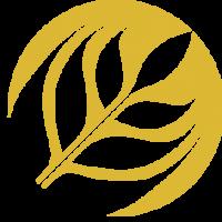 Сотрудничество в рамках Золотой осени — 2016